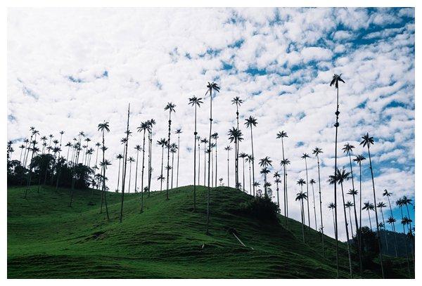 oh-belle_reisfotografie_reisfotos-colombia_fotografie-colombia_fotografia-colombia_travelphotography_0179 Reizen door Colombia