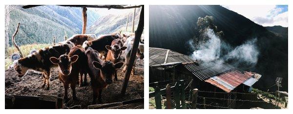 oh-belle_reisfotografie_reisfotos-colombia_fotografie-colombia_fotografia-colombia_travelphotography_0183 Reizen door Colombia