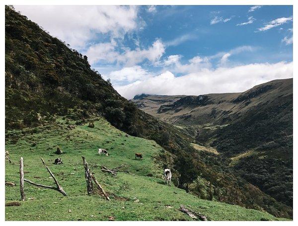 oh-belle_reisfotografie_reisfotos-colombia_fotografie-colombia_fotografia-colombia_travelphotography_0184 Reizen door Colombia