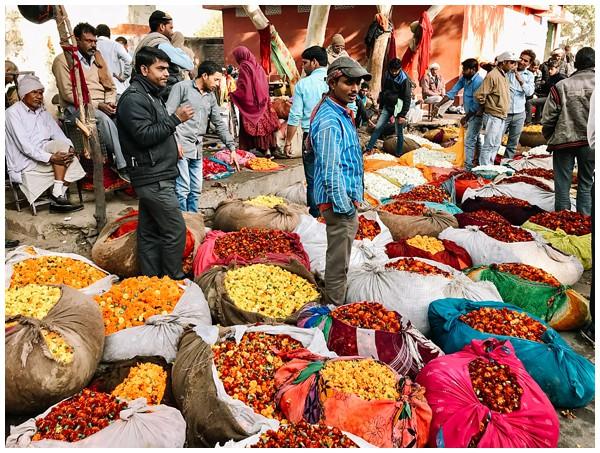 ohbelle_reisverslag-india_india-reis_varanasi-reizen_reisfotograaf_holi-festival-india_holi-festival-delhi_0021 Reizen door India